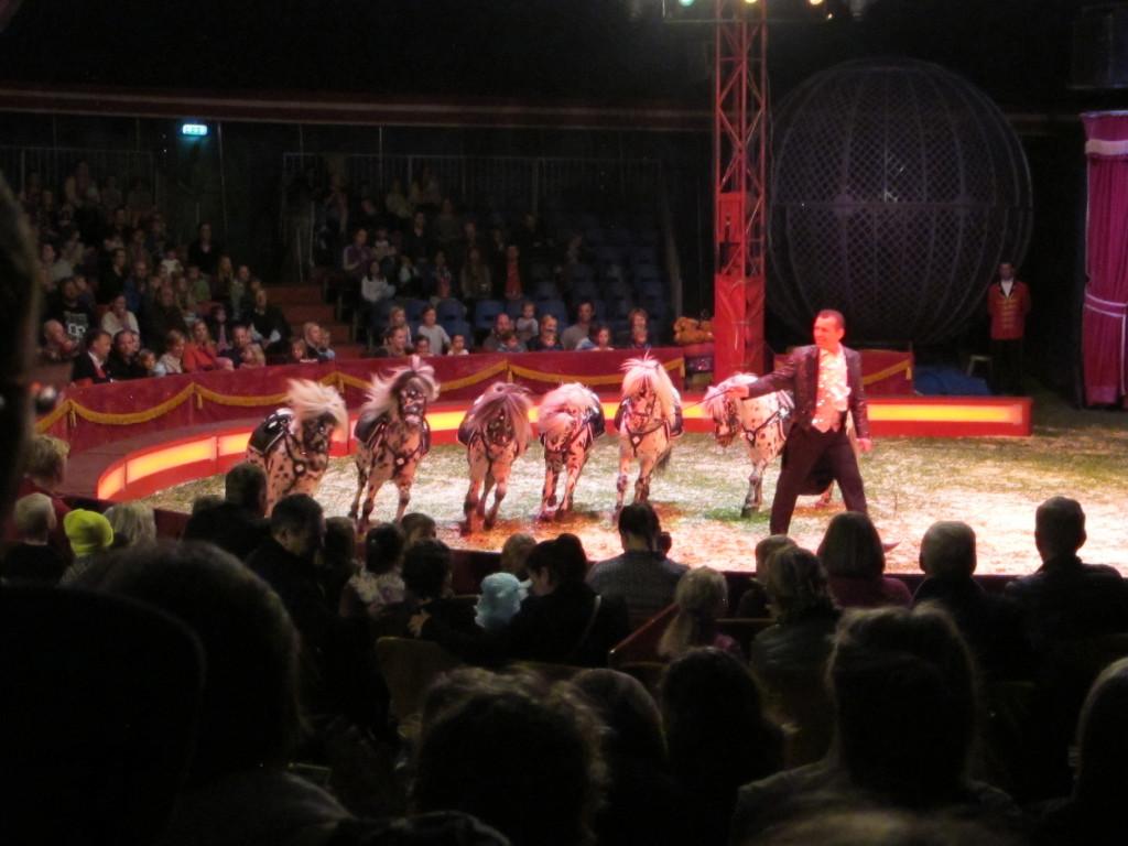 cirkus5